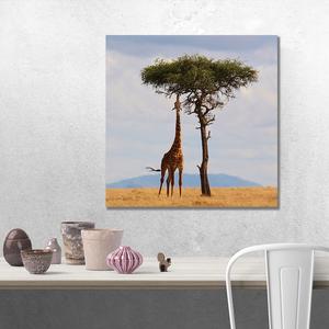 Fotoleinwand Format 40x40 cm